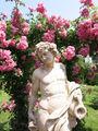 RosenneuheitengartenBeutigBacchus.jpg
